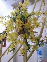 Hoa Lan Treo Tường màu Vàng - Mã: HPL 155