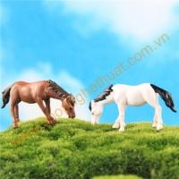 Ngựa cao mini