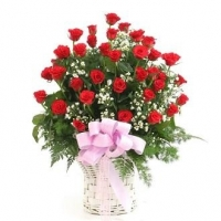 Lãng hoa đẹp 03