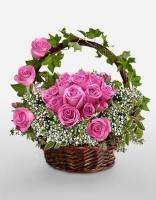 Lãng hoa đẹp 02