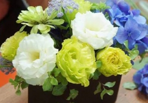 Cắm hoa tươi xanh mát mùa hè chỉ trong 3 nốt nhạc