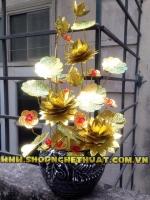 Cây cành vàng lá ngọc. CVLN 01