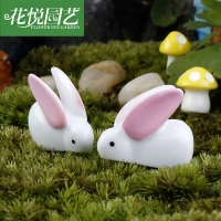 Thỏ mini