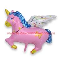 Bóng hình ngựa Pony