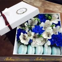 Hộp cắm hoa A006