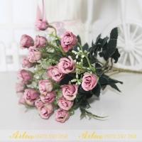 Cụm hồng nhí A101