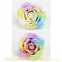 Hoa sáp 7 màu