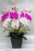 Hoa Lụa Nghệ Thuật HTP029