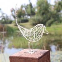 Chim câu mô hình
