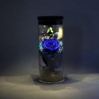 Hộp hoa đèn dùng usb