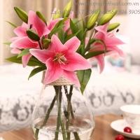 Cụm hoa ly 7 bông 2 nụ HL033