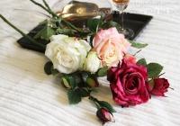 Hồng nhung 1 bông 1 nụ 6 lá HL038