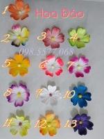 Cánh hoa đào