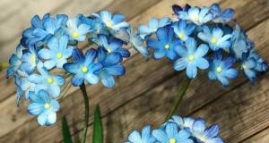 Hướng dẫn làm hoa huệ sông Nin bằng giấy 3D cực đơn giản