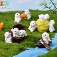 Thỏ trắng chăm chỉ (2 thỏ)