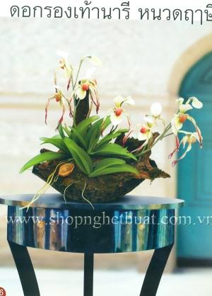 Hướng dẫn làm hoa Lan Hài
