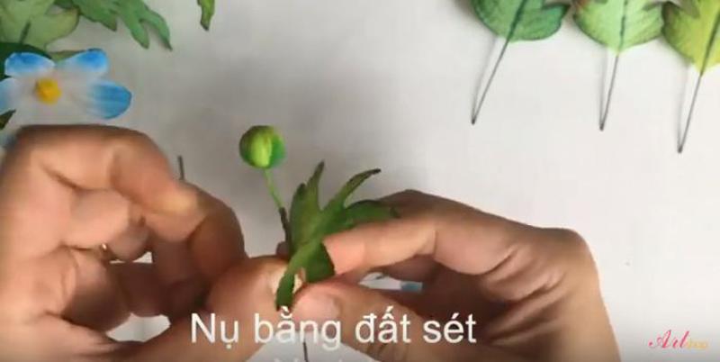 Quấn lá và nụ vào cùng 1 cành