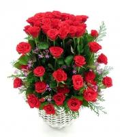 Lãng hoa đẹp 06