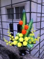 Hoa Hồng Vàng - Mã: HPL 255