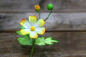 Cách làm hoa sao nháy bằng giấy 3D màu loang